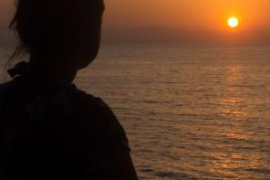Warum eine Tauchsafari der perfekte Urlaub ist.