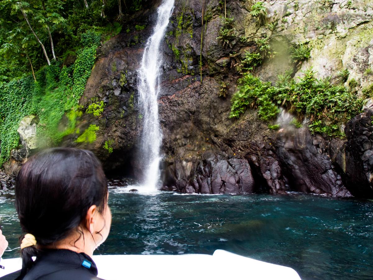 Costa_Rica_Cocos_Island_Undersea_Hunter_Hammerhaie-29