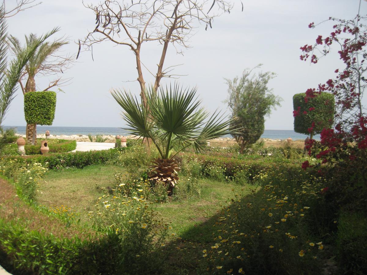 Shams_Alam_Hotel_Wadi_Gimal_Gemal_Nationalpakr_Wüste_Marsa_Alam-5