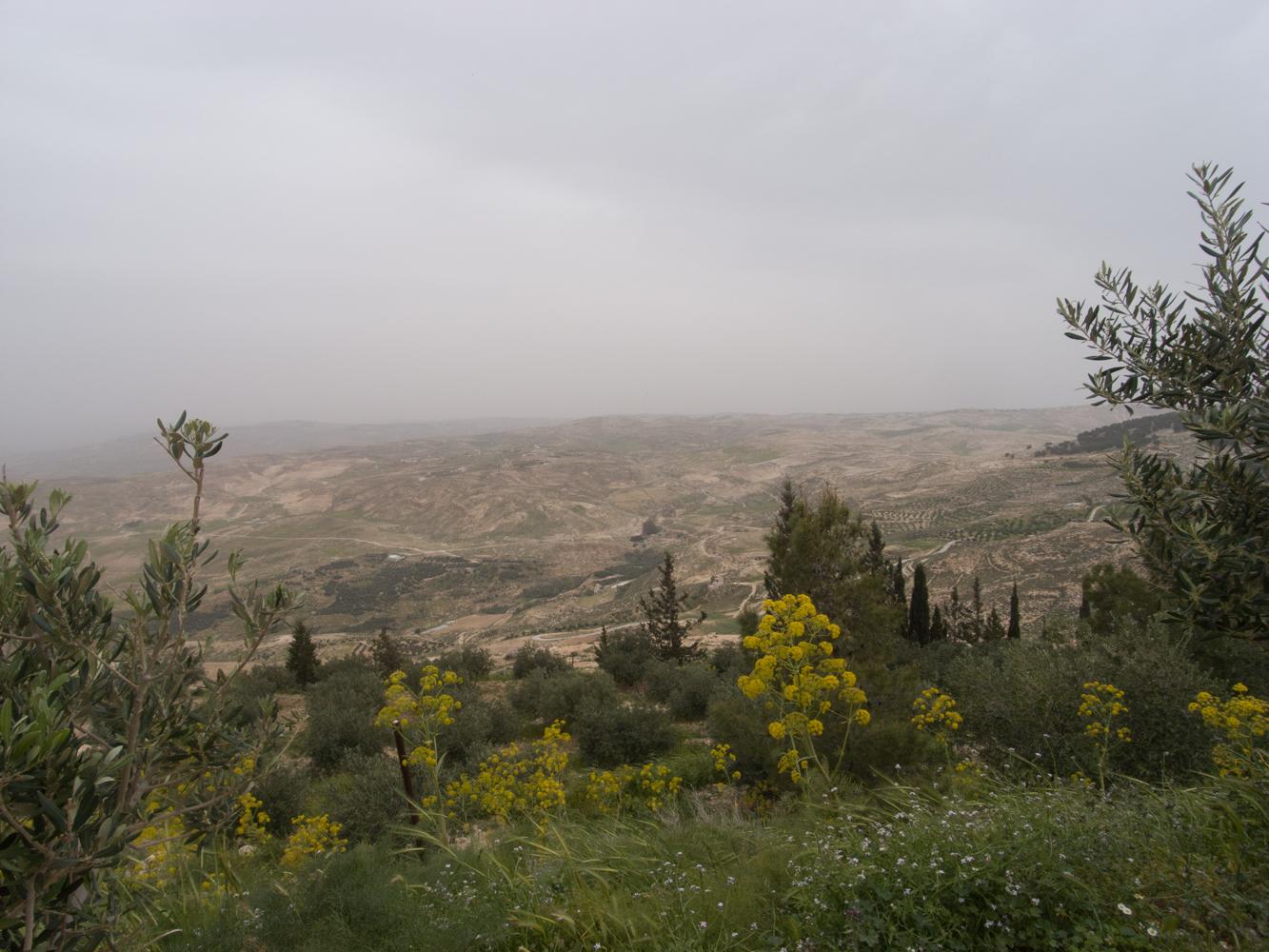 Jordanien_Aqaba_Rotes_Meer_Amman_Fotos-19