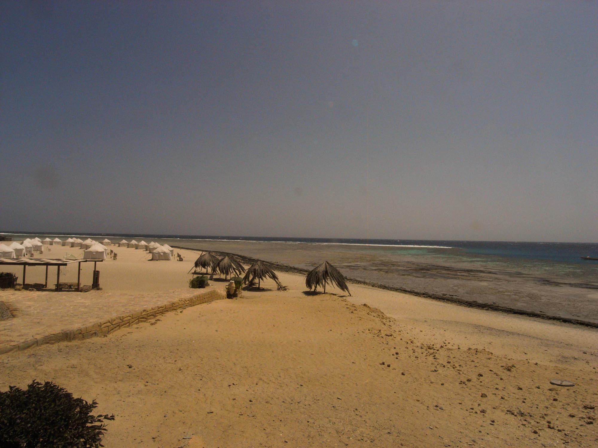 Marsa_Shagra_Red Sea Diving Safari_Tauchen_Rotes_Meer_Ägypten-11