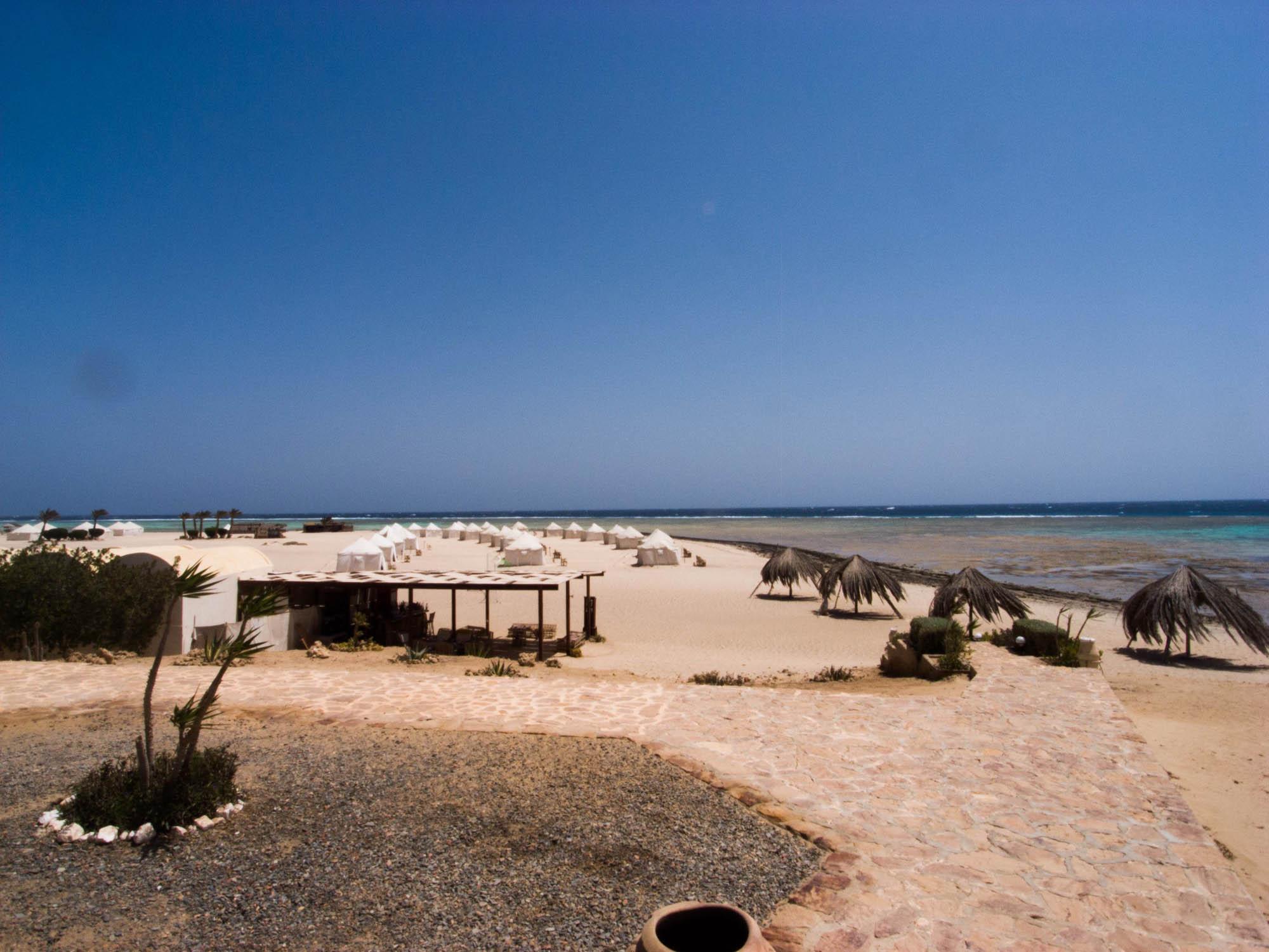 Marsa_Shagra_Red Sea Diving Safari_Tauchen_Rotes_Meer_Ägypten-18