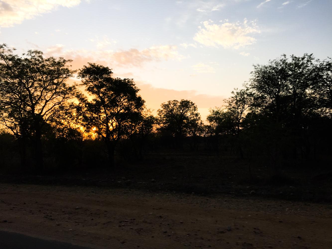 Südafrika_Southafrica_Kruger_Krüger_Nationalpark-48