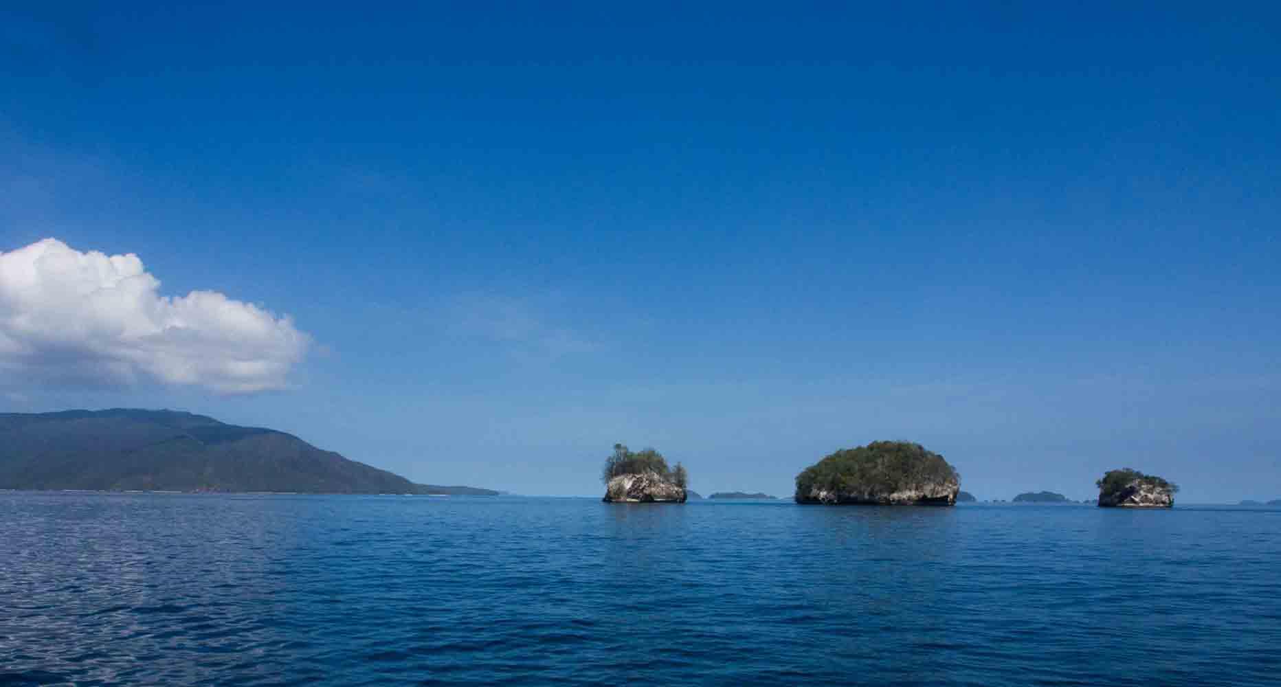 Raja Ampat Indonesien Tauchsafari, Nemo, Wobbegong, Teppichhai