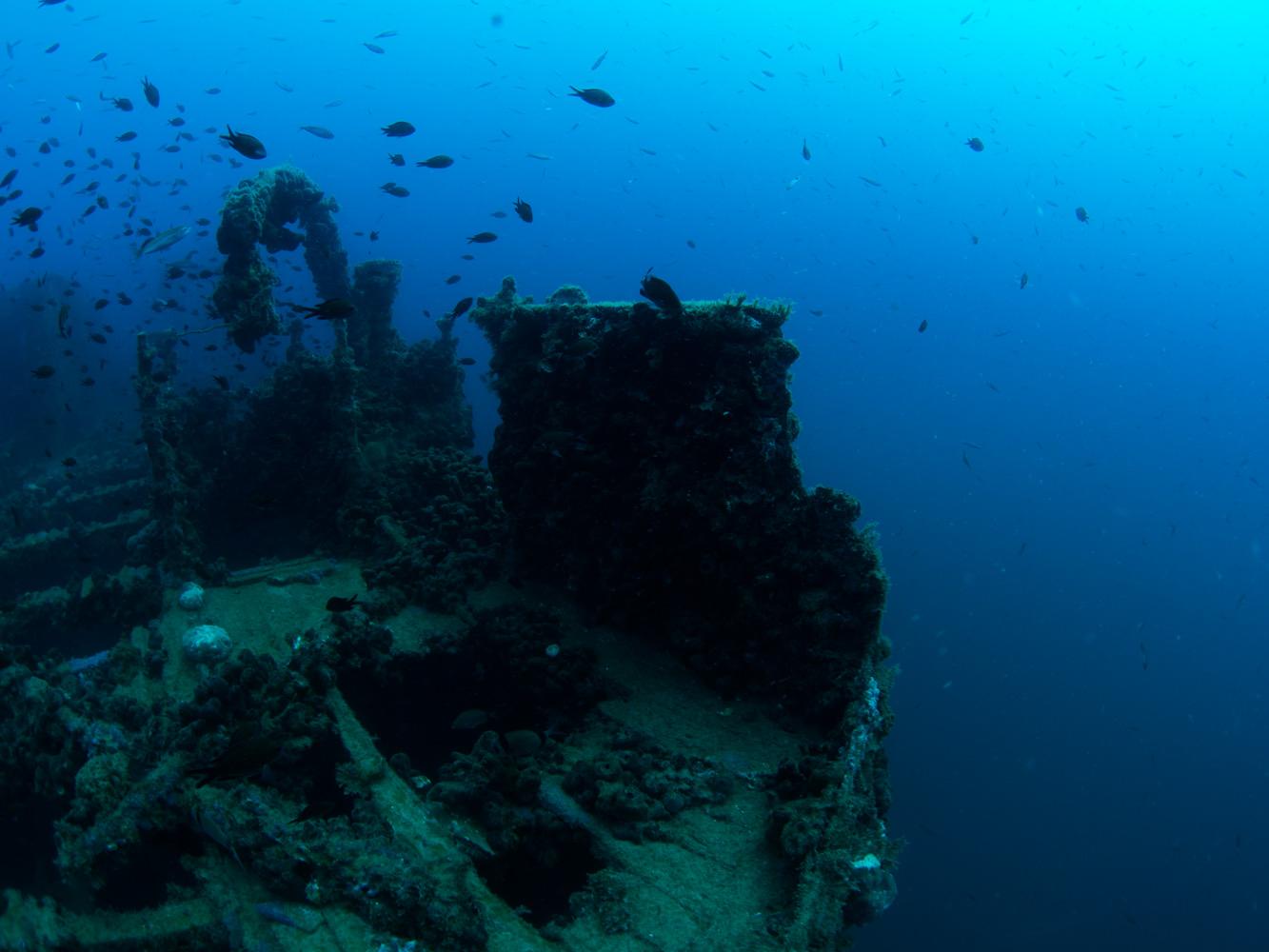 Vrsar_Kroatien_Triton_Diving-9