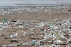 Wie können wir Plastikmüll reduzieren?