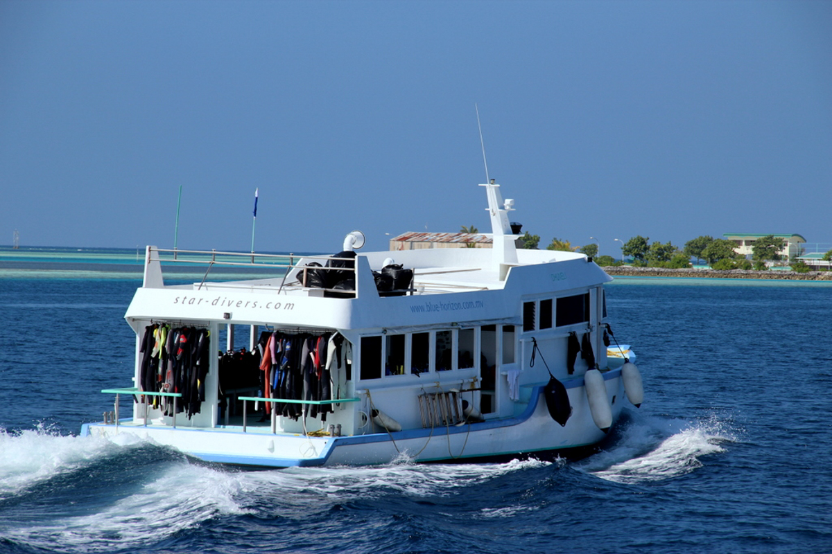 Malediven_Tauchsafari_Horizon III-11