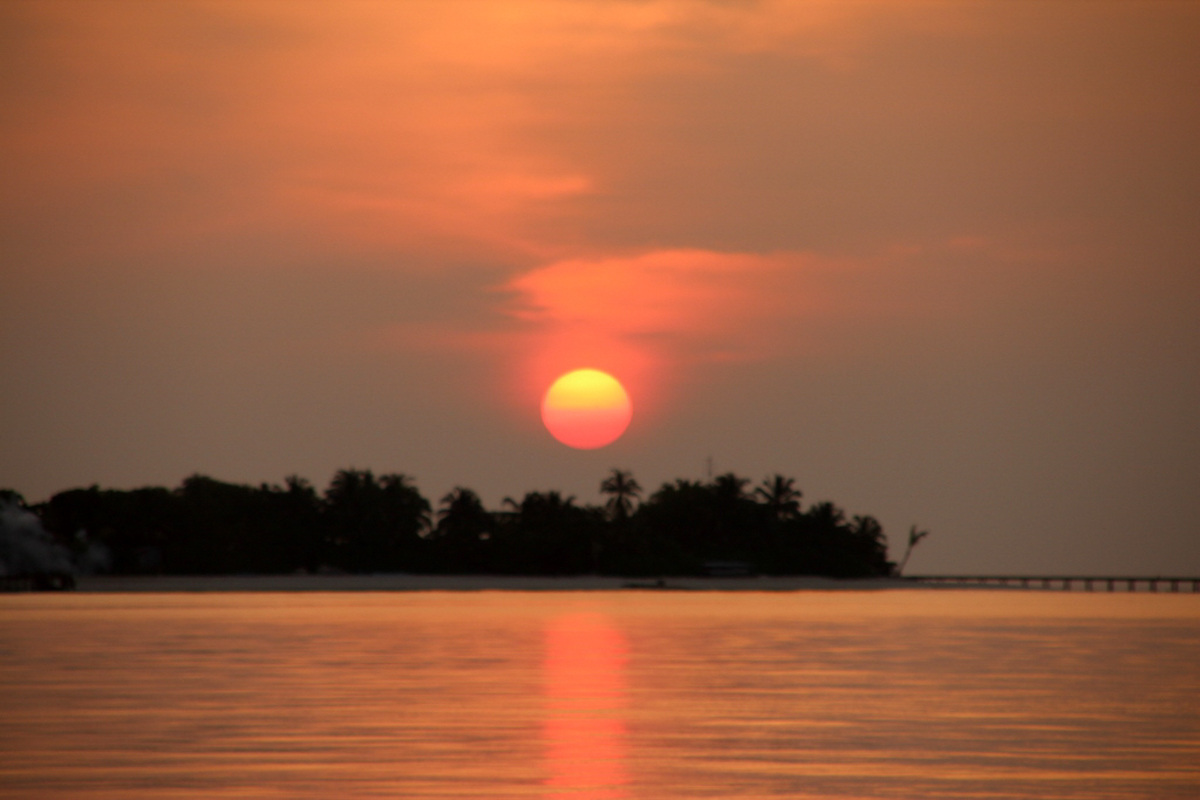 Malediven_Tauchsafari_Horizon III-2