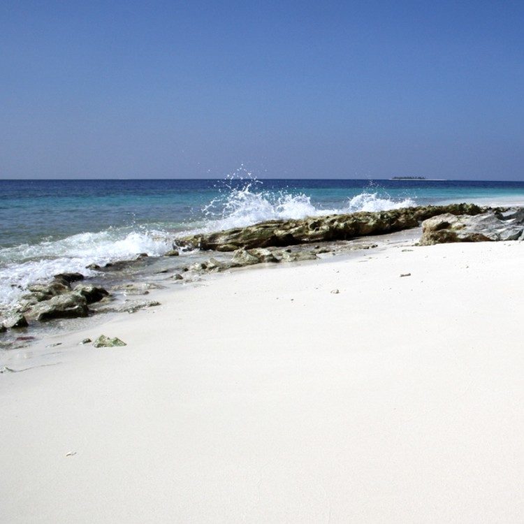 Malediven_Tauchsafari_Horizon III-9