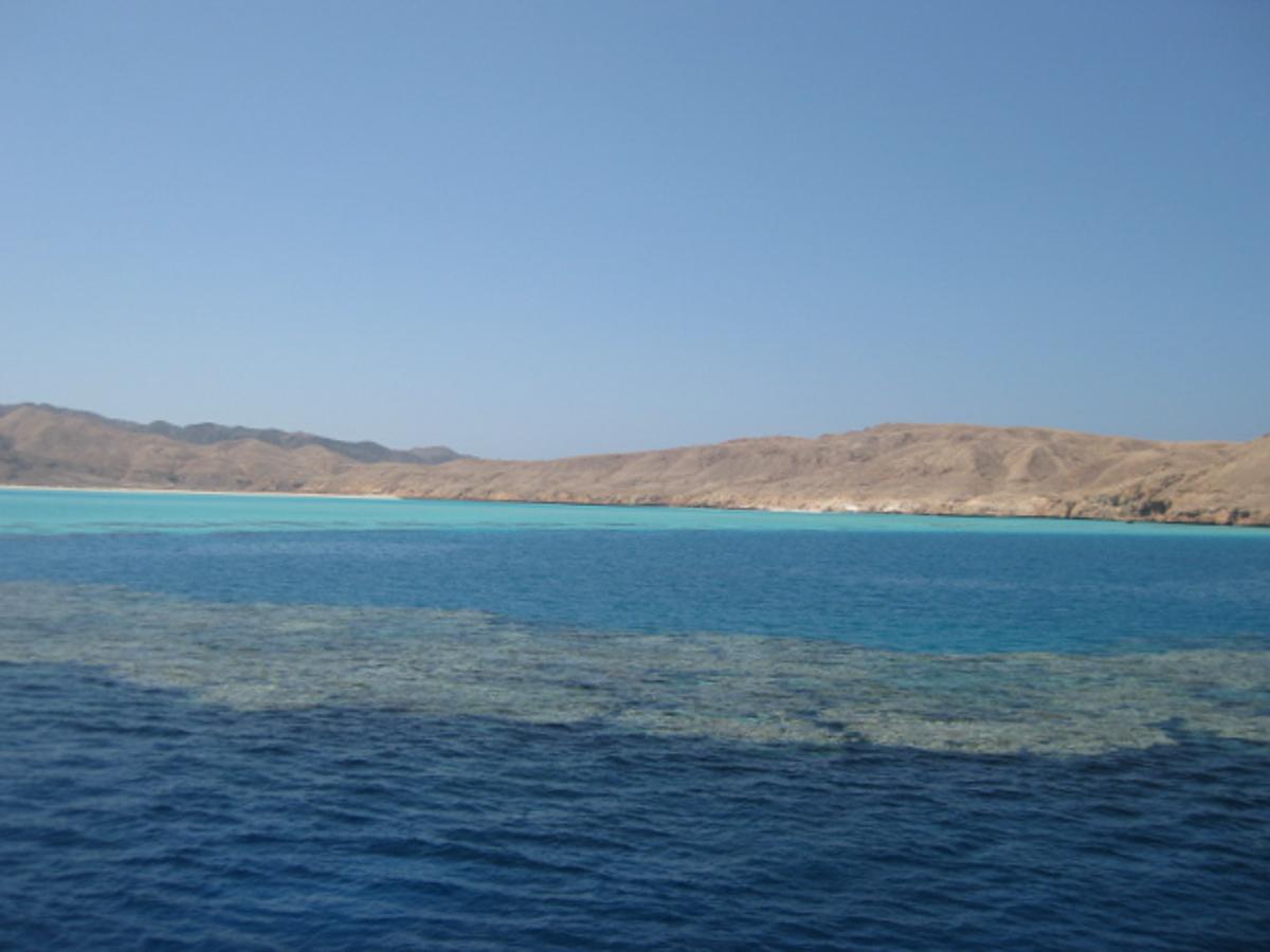 Ägypten_ Golden_Dolphin_StJohns_Rocky_Tauchsafari-3
