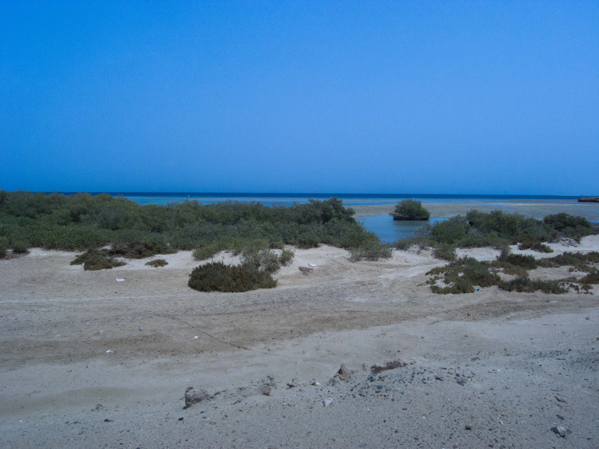 Ägypten_Individualreise_Auto_Lahami_Marsa_Alam_El_Quesir_Marsa_Shagra_Lahamy_Red_Sea_Diving_Safari-7