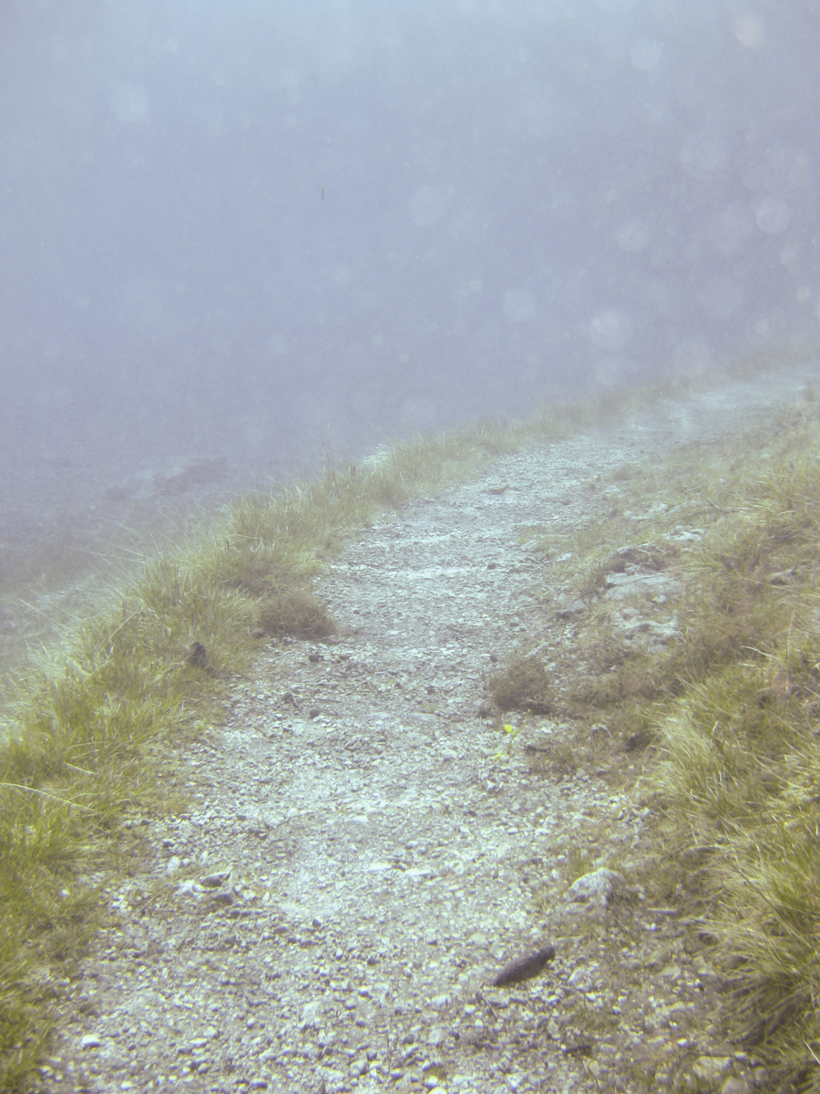 Österreich_Steiermark_Grüner_See_Tragöß_2009-8