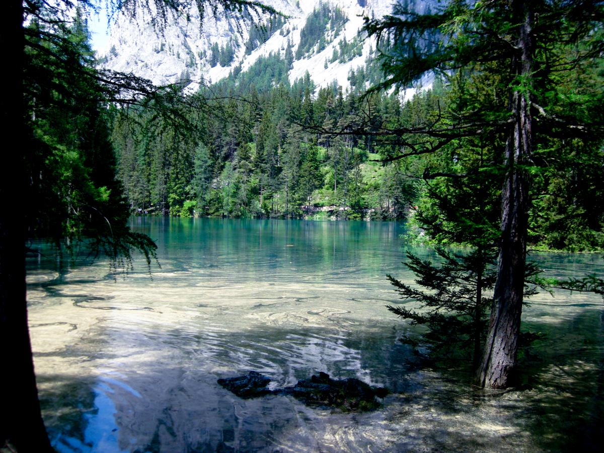 Österreich_Steiermark_Grüner_See_Tragöß_2009-9