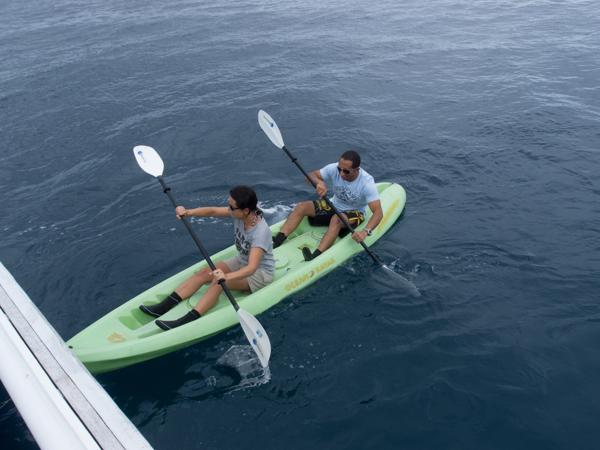 Costa_Rica_Cocos_Island_Undersea_Hunter_Hammerhaie-20
