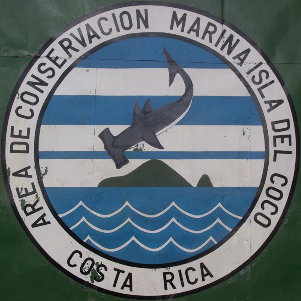 Costa_Rica_Cocos_Island_Undersea_Hunter_Hammerhaie-21