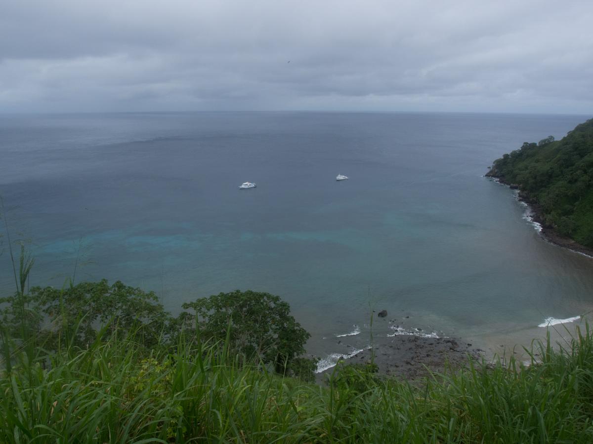 Costa_Rica_Cocos_Island_Undersea_Hunter_Hammerhaie-22
