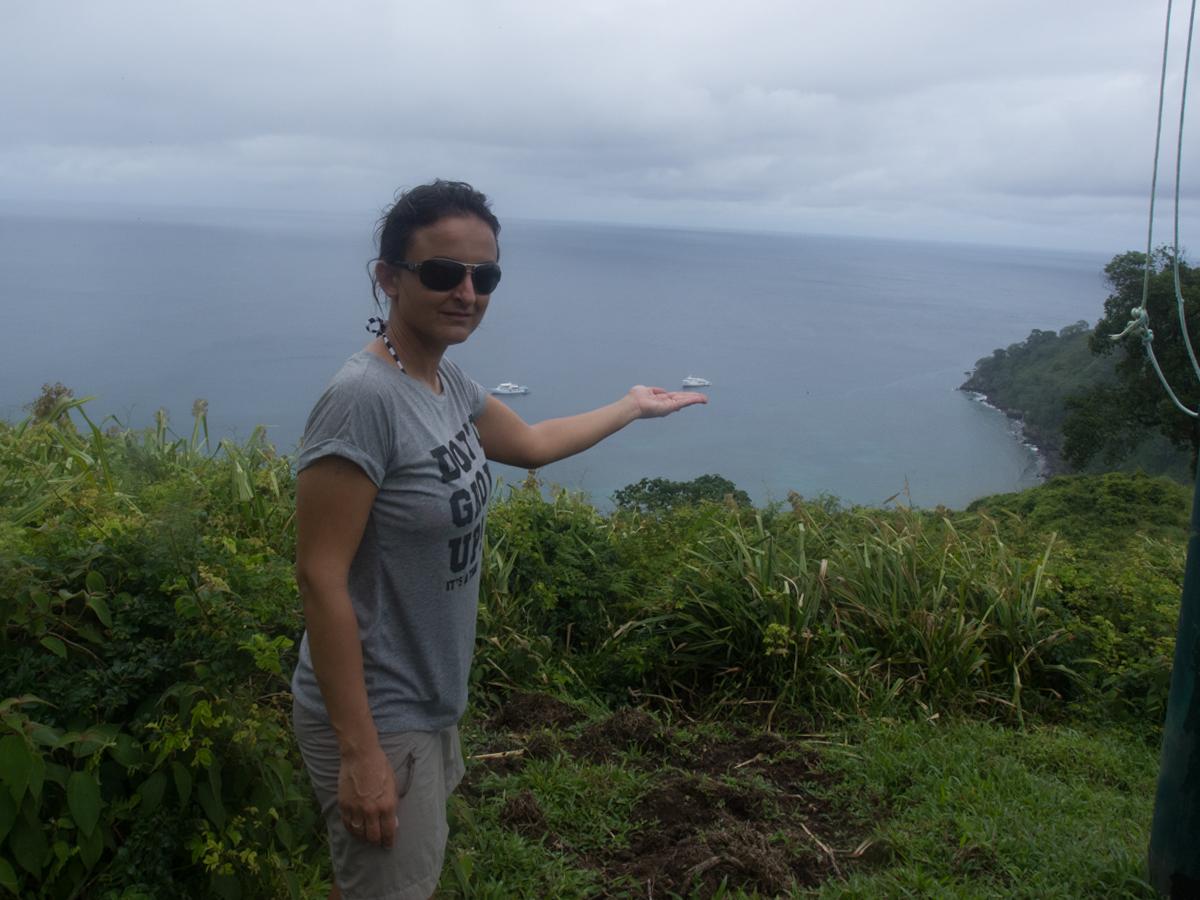 Costa_Rica_Cocos_Island_Undersea_Hunter_Hammerhaie-23