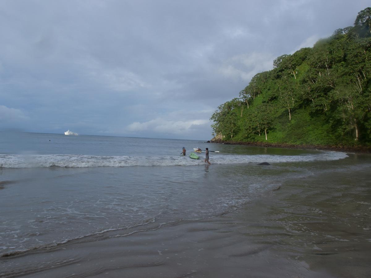Costa_Rica_Cocos_Island_Undersea_Hunter_Hammerhaie-24
