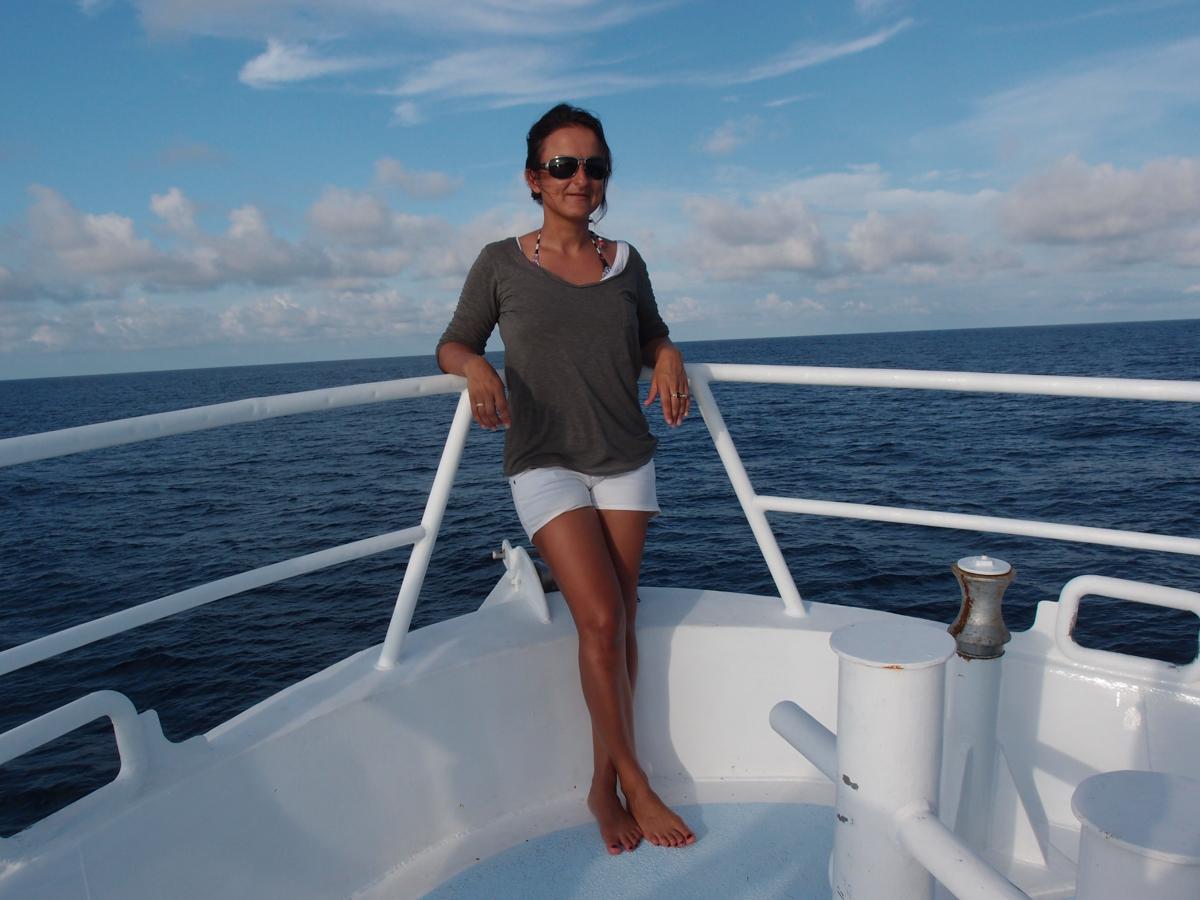 Costa_Rica_Cocos_Island_Undersea_Hunter_Hammerhaie-5