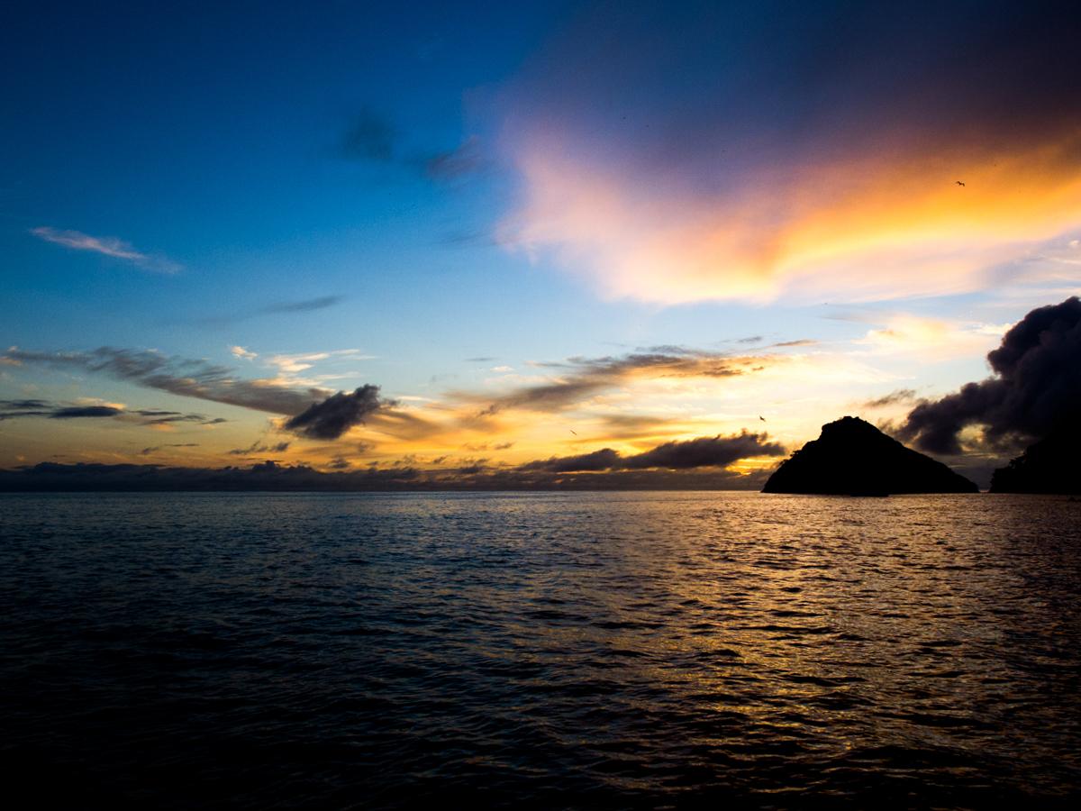 Costa_Rica_Cocos_Island_Undersea_Hunter_Hammerhaie-6