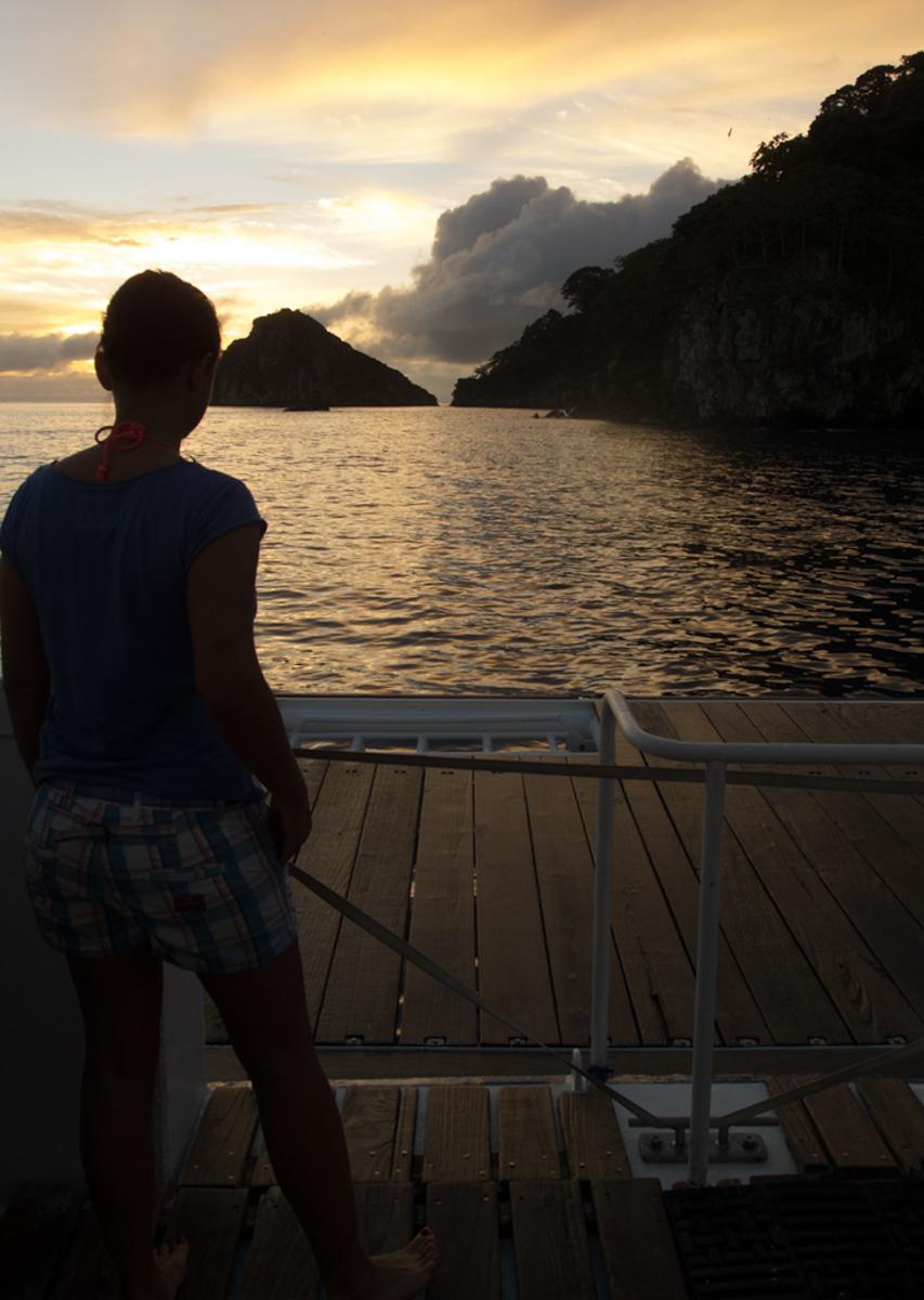 Costa_Rica_Cocos_Island_Undersea_Hunter_Hammerhaie-7