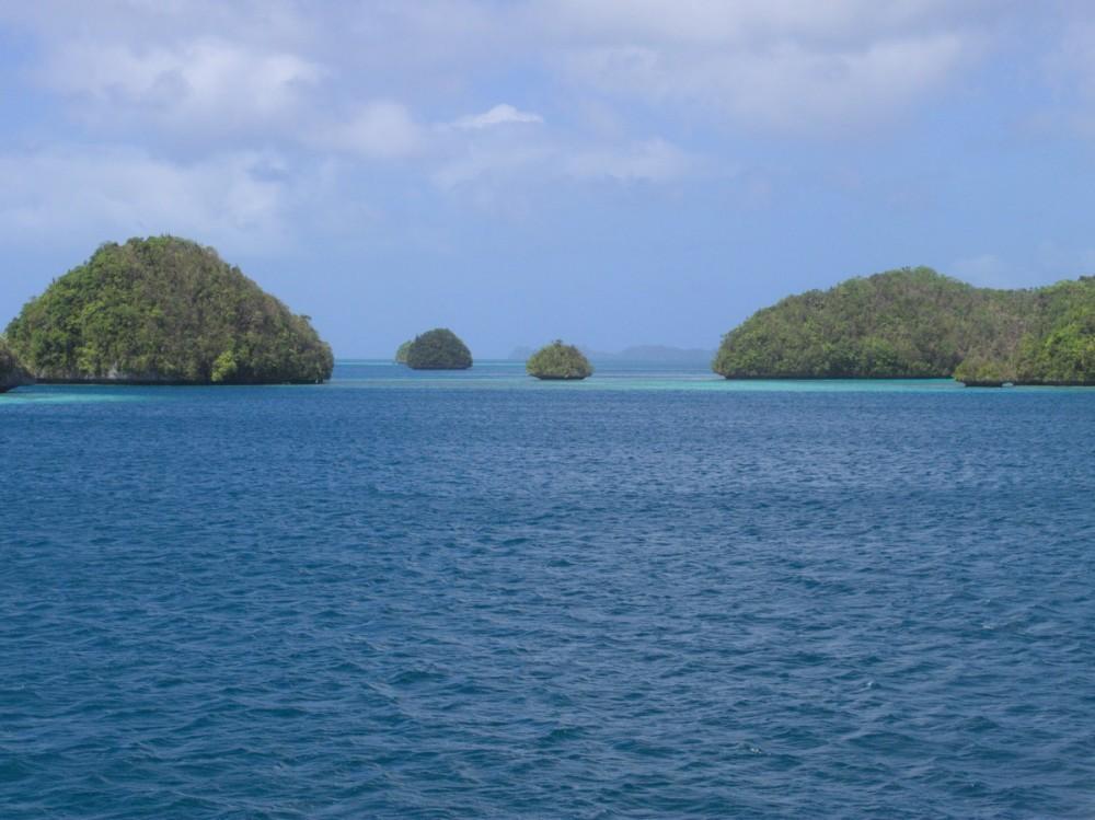 Palau_BlueCorner_BlueChannel_Sharks-13