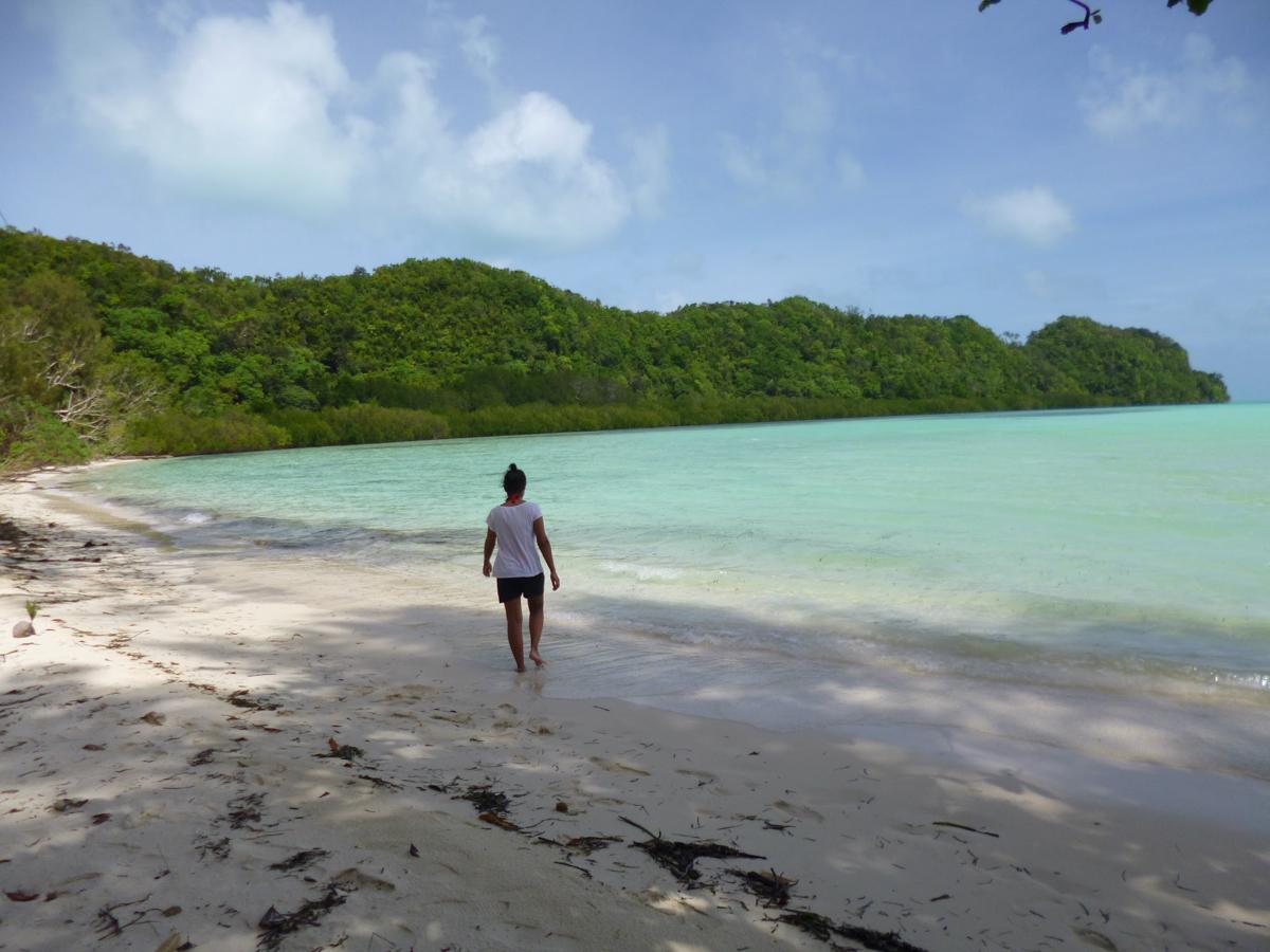 Palau_BlueCorner_BlueChannel_Sharks-18