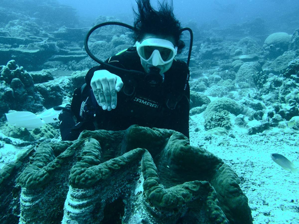Palau_BlueCorner_BlueChannel_Sharks-2