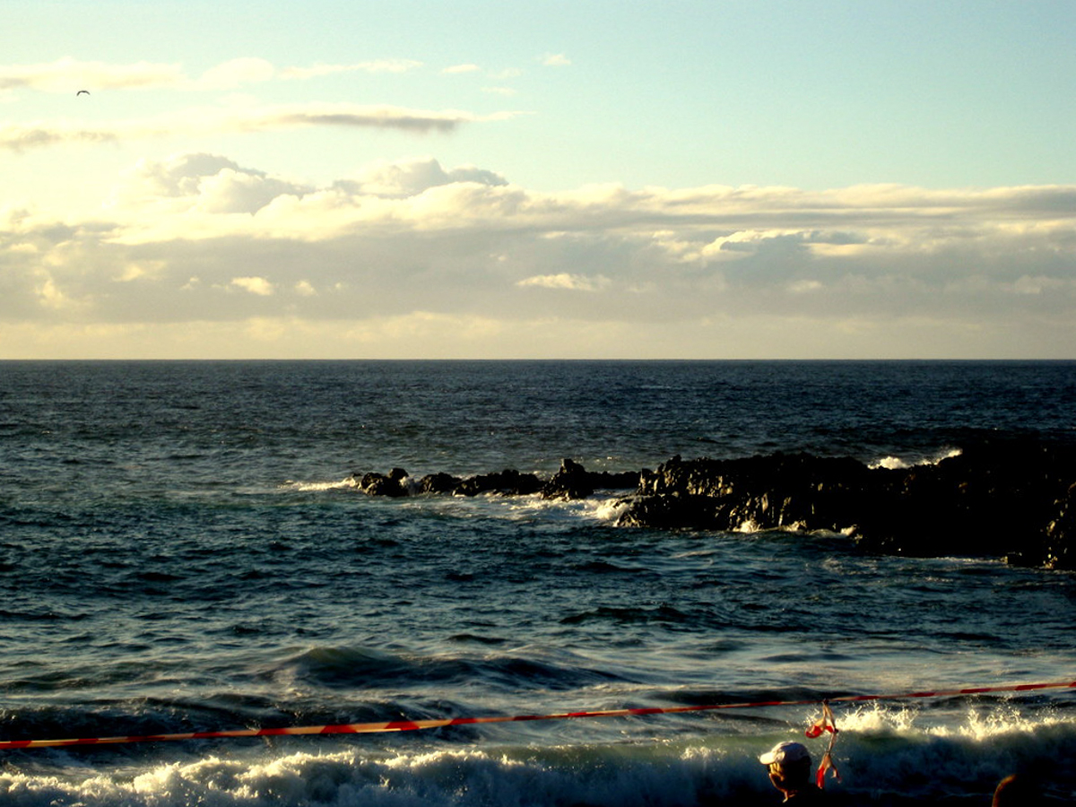 Teneriffa_Kanarische_Inseln_Puerto_de_la_Cruz-8