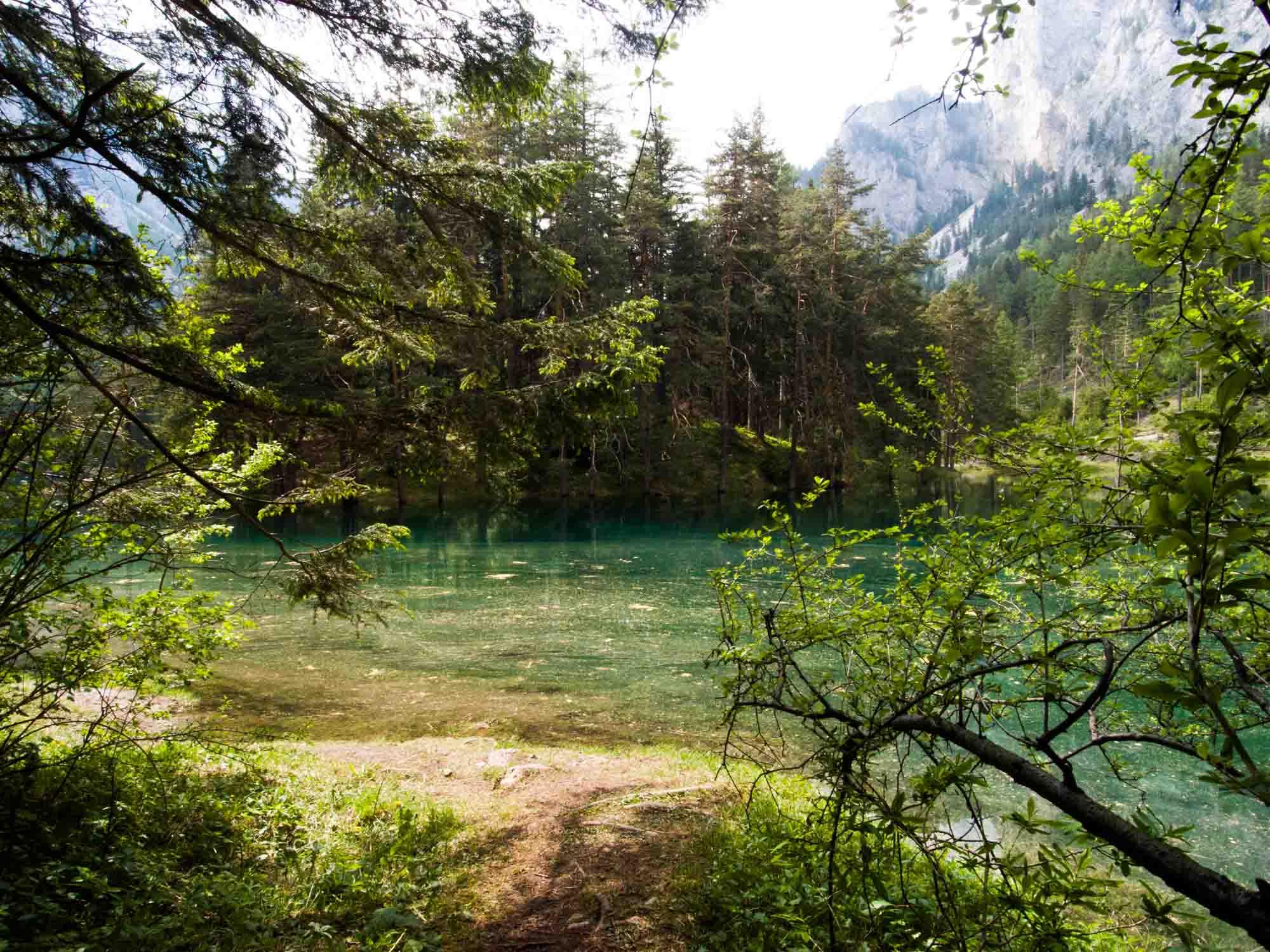Österreich_Tragöß_Grüner See_Steiermarkt-45