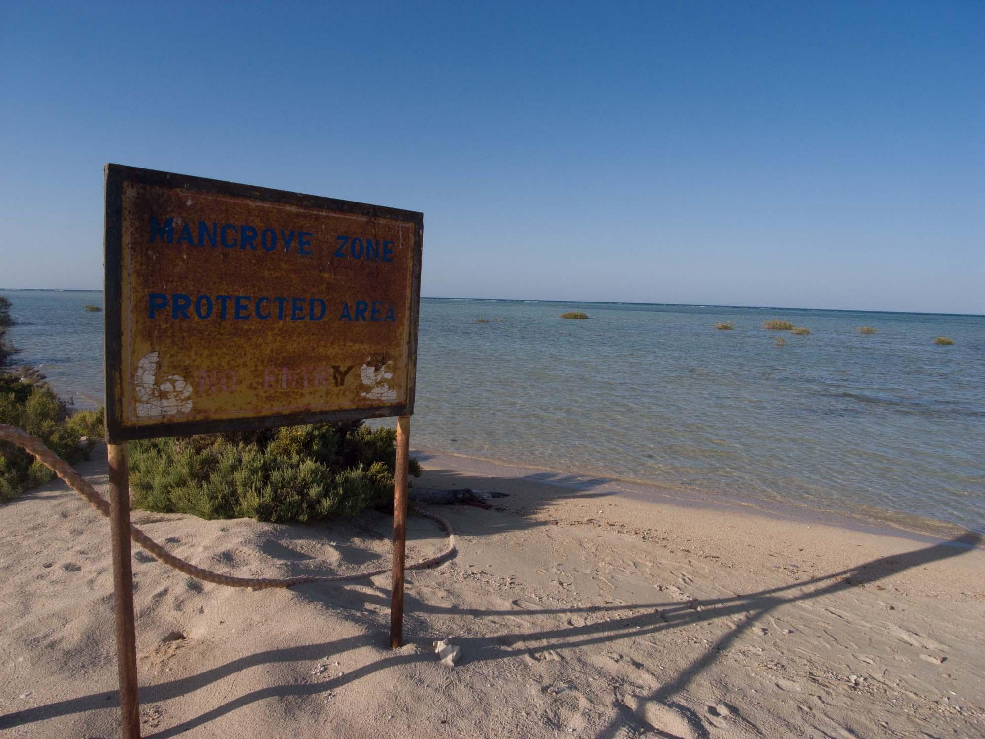 Lahami_Bay_ Red Sea Diving Safari_Rotes Meer_Tauchen-5