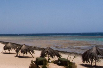 Äypten_Marsa_Alam_Marsa_Shagra_Red Sea Diving Safari_Tauchen_Rotes_Meer_Ägypten-18