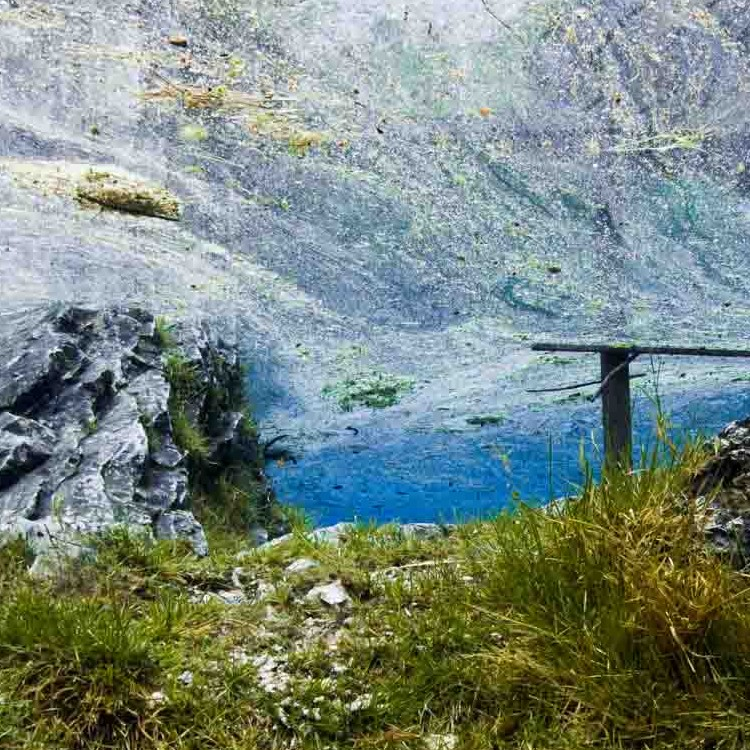 Österreich_Grüner_See_Mai_30-5