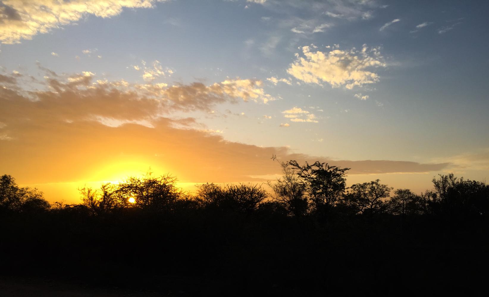 Südafrika_Southafrica_Kruger_Krüger_Nationalpark-49