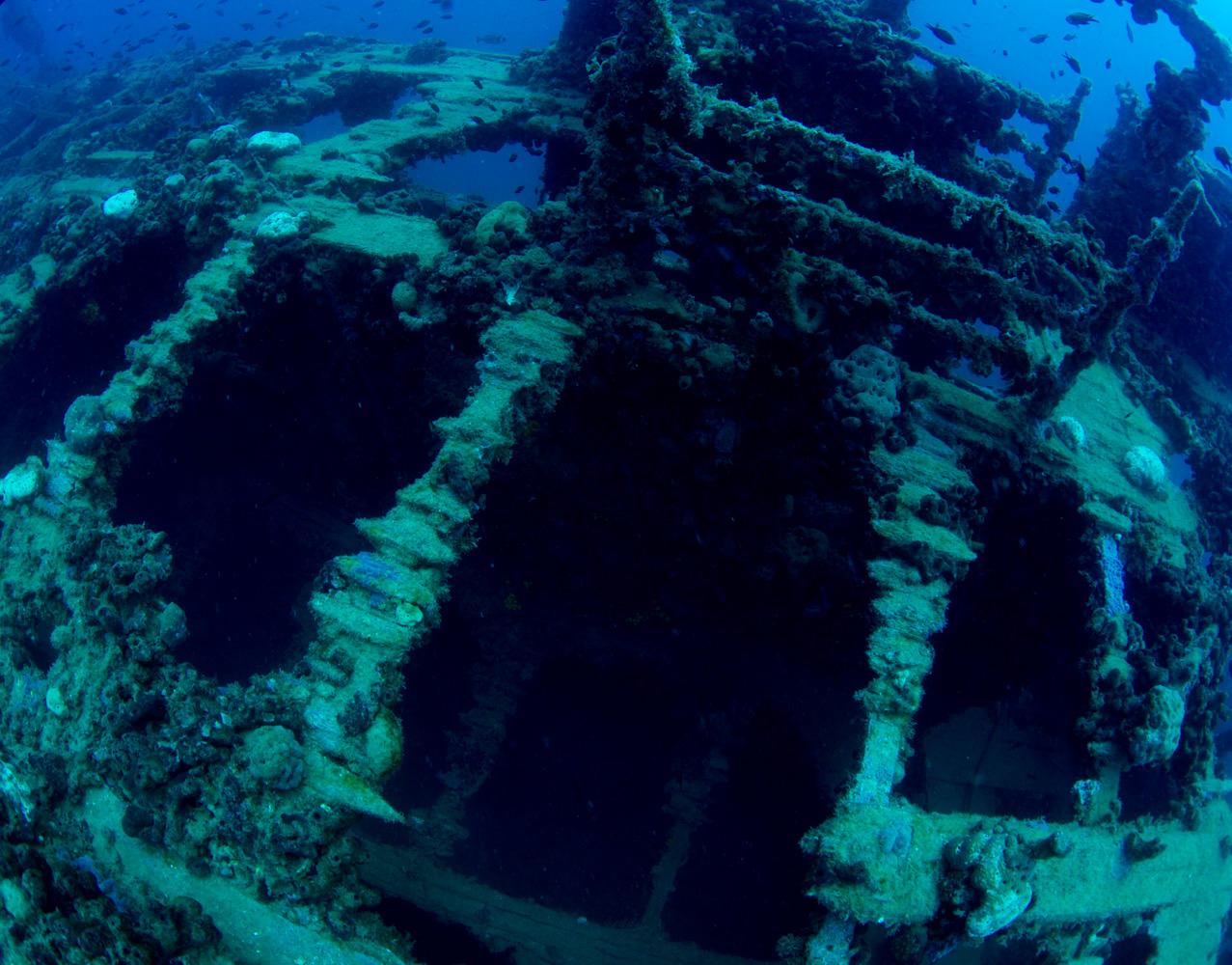 Vrsar_Kroatien_Triton_Diving-12