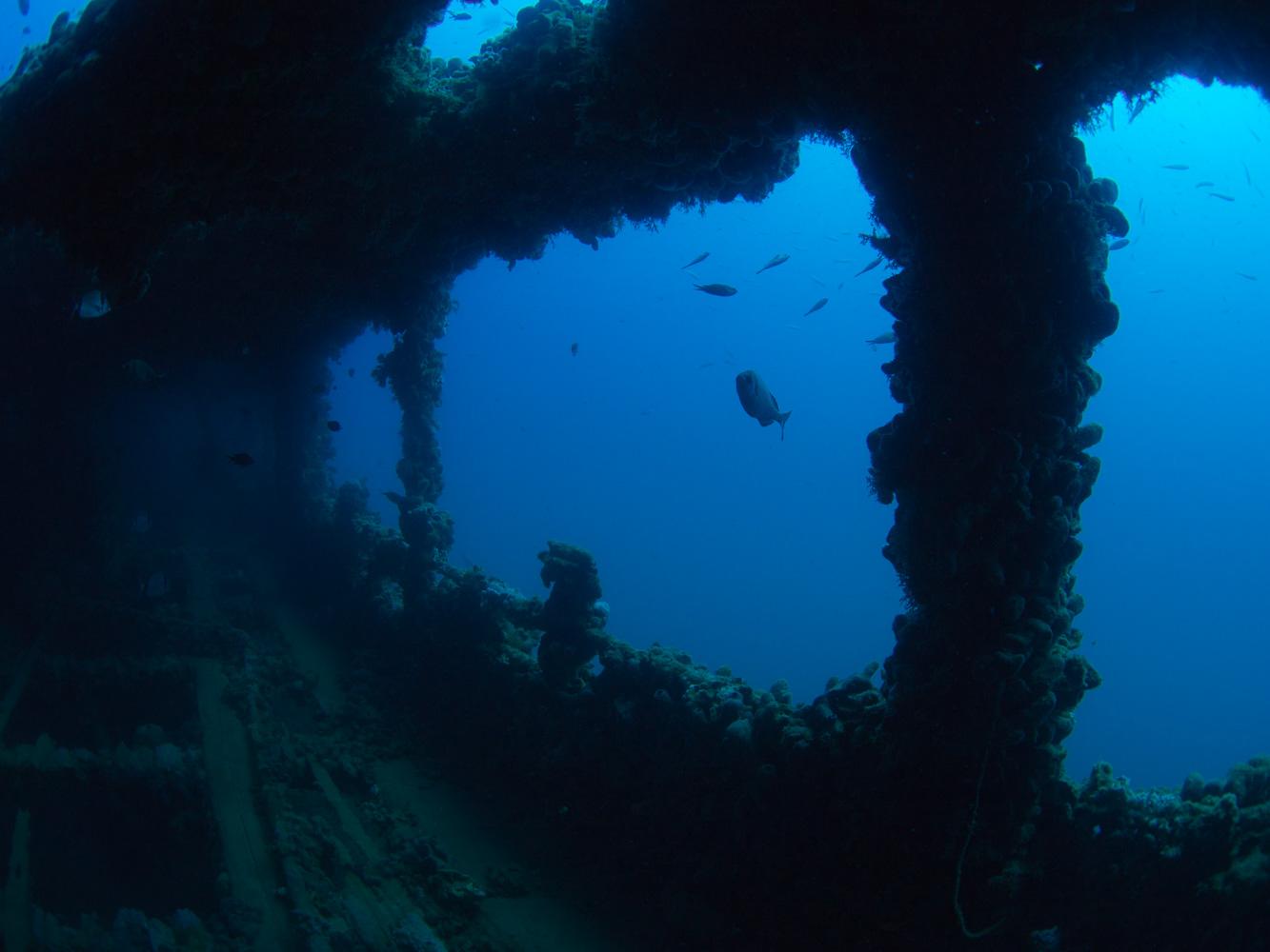 Vrsar_Kroatien_Triton_Diving-18