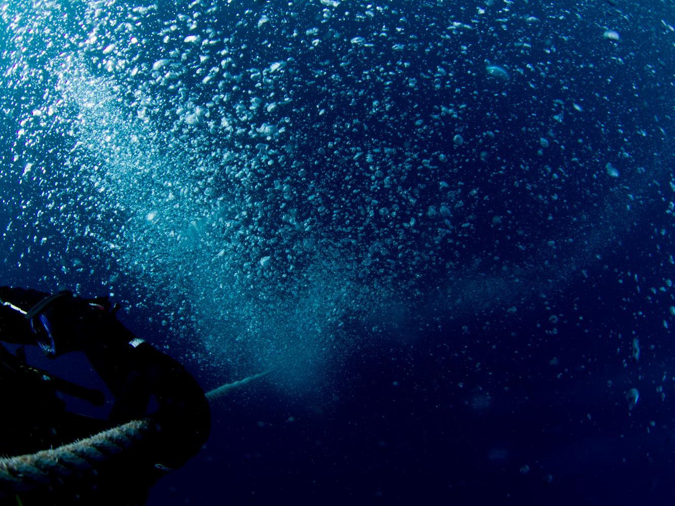 Vrsar_Kroatien_Triton_Diving-23