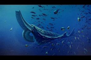 Einblicke in die Tiefe der Ozeane