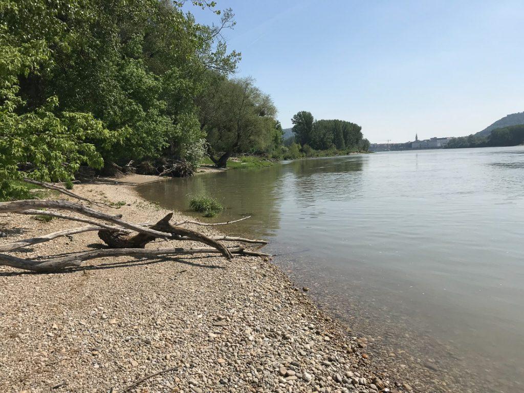 Österreich Donau Auen