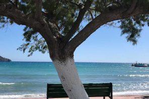 Familienurlaub auf Kreta: griechische Gemütlichkeit.