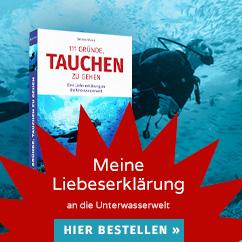 Bettinas Buch: 111 Gründe, tauchen zu gehen: Eine Liebeserklärung an die Unterwasserwelt 111 Gründe, tauchen zu gehen: Eine Liebeserklärung an die Unterwasserwelt