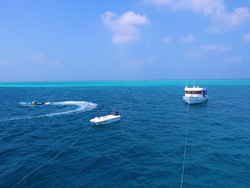 Malediven Carpe Diem Tauchsafari (1 of 1)-38