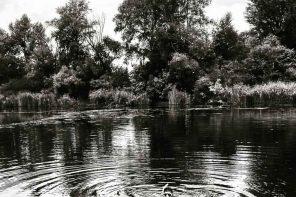 Schwimmen und Schnorcheln im Kaltwasser: trau Dich und spring rein.
